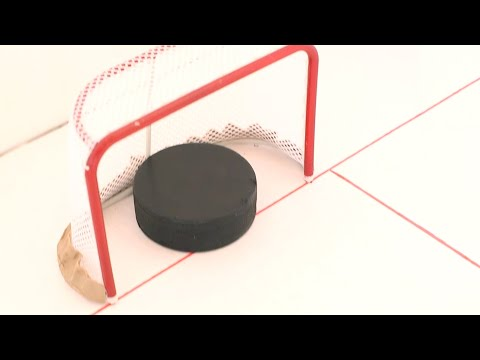 If Hockey Nets Were Ridiculously Small