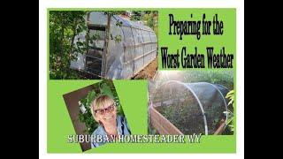 Preparing for the Worst Garden Weather