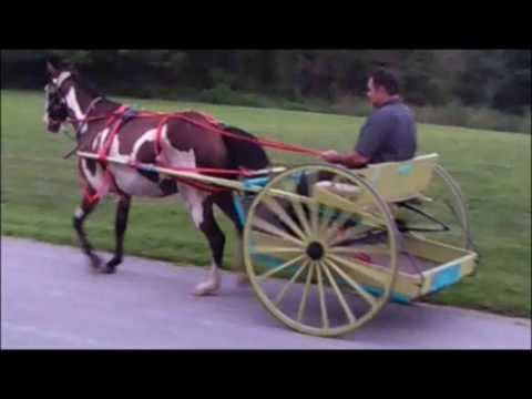 FOR SALE Antique Restored Meadowbrook Horse Cart Buggy - $1350 (Morgantown)