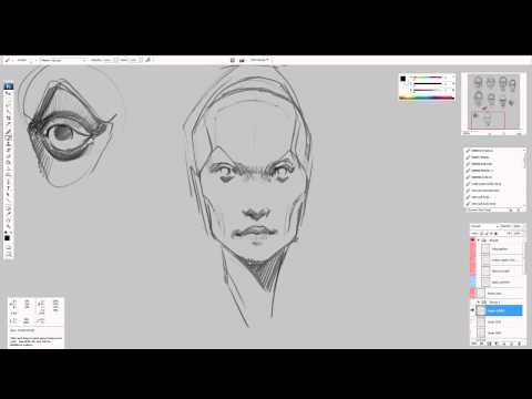Face - Structure - exercise 2