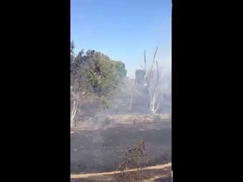 Granada High School Vegetation Fire Livermore, California June 1, 2014