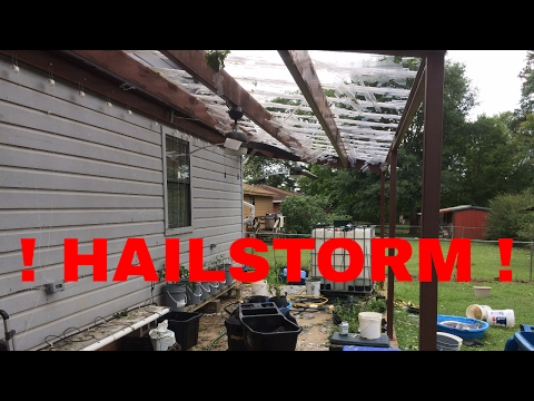 Aftermath and Destruction of East Texas Hailstorm