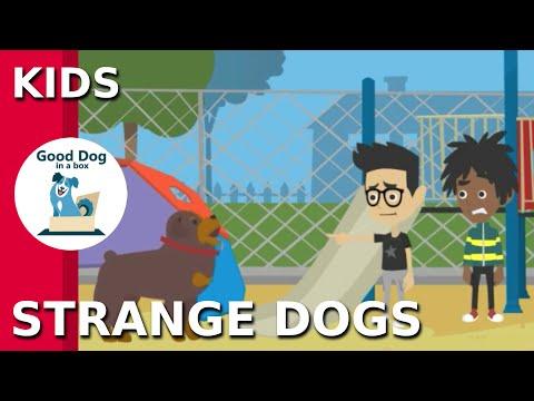 Dog Bite Prevention Video for Kids - Be SAFE Around Strange Dogs