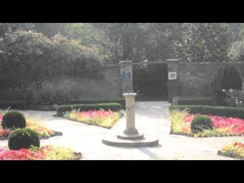 Streatham Common Landscape Music Video