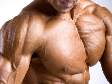 The Best Exercise for CHEST: Pec Fly