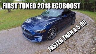 eco boost Videos - 9tube tv