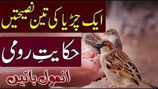 Aqalmand Chidiya ki Nasihat | Beautiful Moral Story | The Wise Sparrow | MA Abdullah