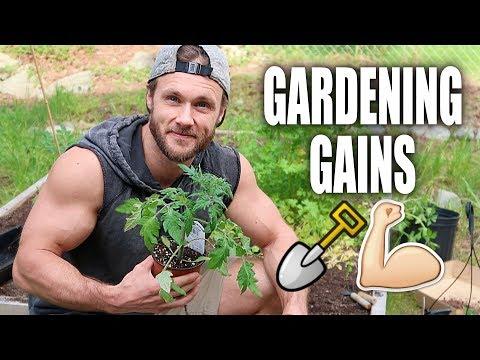 Spring Garden Tour + Tips!