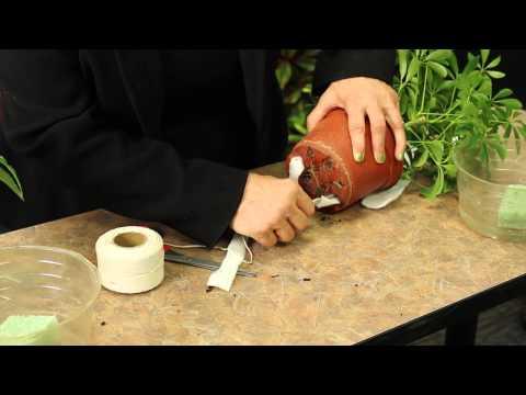 Homemade Plant Wicks : Gardening & Plant Care