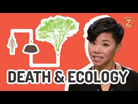 Is Dying Bad For The Environment?
