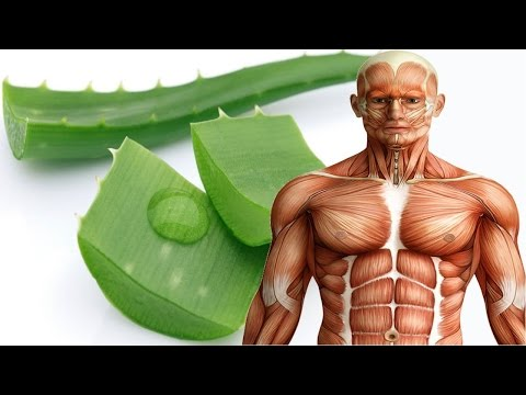 See what Aloe vera Can Do To Your Body