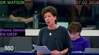 "EX-UKIP-DIANE JAMES DEMOLISHES EUs ""TRANSNATIONAL SEATS"" ""EUs 2018 incarnation of 1984"" - 07.02.2018"