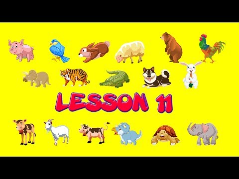 Learning English - Learn Animals, learn colors, doodle for children lesson 11
