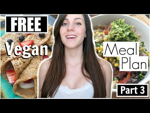 Part 3: FREE VEGAN MEAL PLAN (Quick, Easy, Healthy)