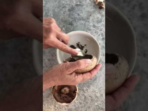 How to Remove the Stem and Gills from Portobello Mushrooms