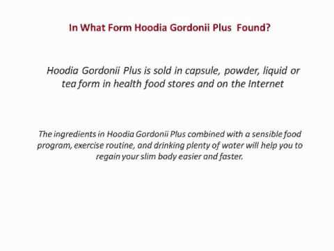 Where to Buy Best Weight Loss Pill Hoodia Gordonii Plus Online