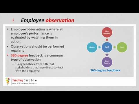 VCE Business Management -  Performance Management