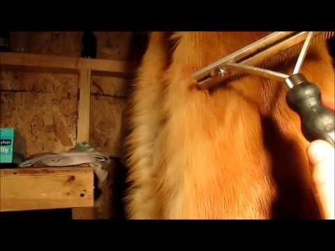 Cleaning Furs 2012
