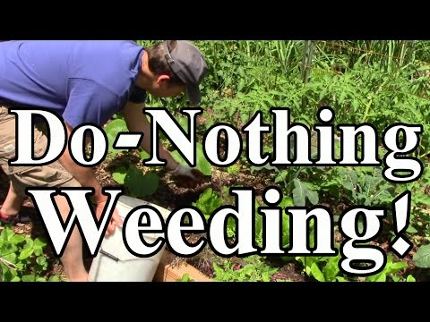 Toward a Do-Nothing Gardening, pt. 4: Organic Weed Control (Lazy Gardening)