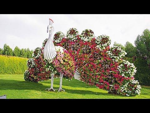 Wedding In Dubai Miracle Garden Dubai Land Al Barsha