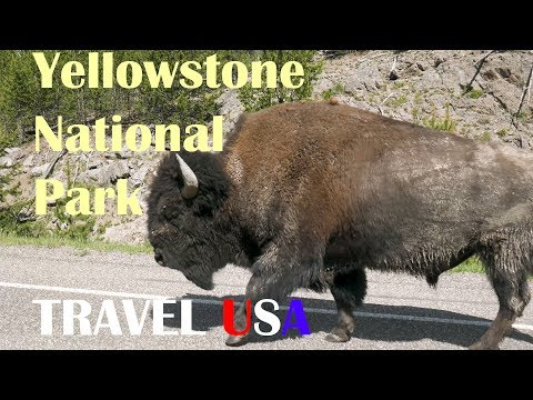 Driving the Beartooth Pass with a 5th Wheel! | Yellowstone National Park Road Trip | Travel USA