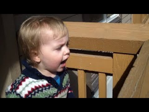 Cute 2 year old boy gets scared by fly! Funny