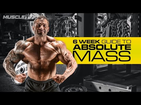 6 WEEKS TO ABSOLUTE MASS | Part 1: Training
