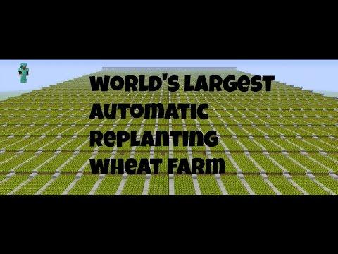 Minecraft: Worlds Largest Auto Replanting Wheat Farm