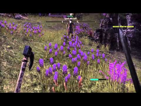 The Elder Scrolls Online console beta Anchors from the harbor