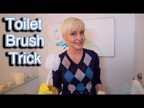 The Domestic Geek: Toilet Brush Trick