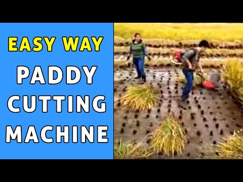 Paddy rice cutter.. With Paddy weeder..For Details +91 40 66588451