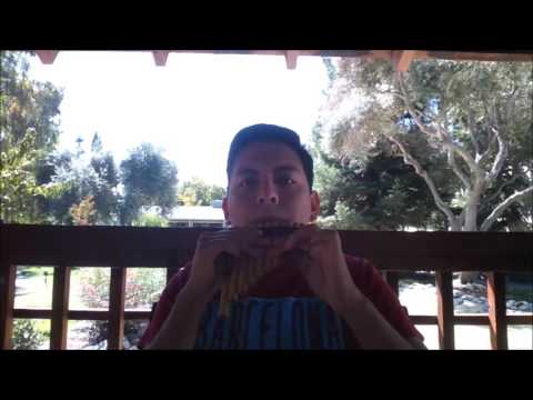 How to play the pan flute