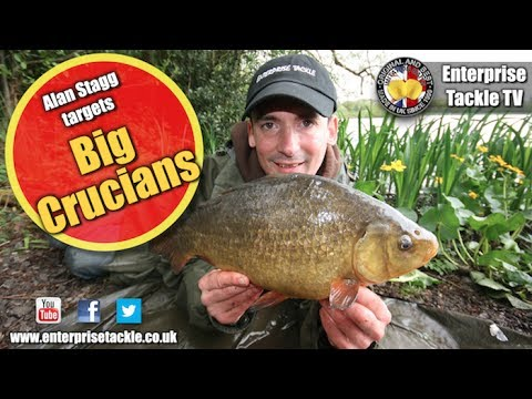How to catch giant crucian carp - see a near record on camera!