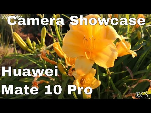 Huawei Mate 10 Pro Ultimate Camera Review (4K) | BEST CAMERAS 2018 ???? | LETS FIND OUT