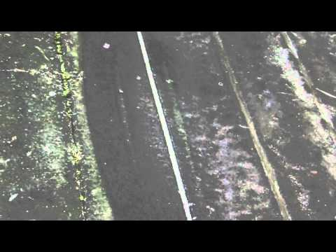 Hopewell Junction Pressure Washing Mold Off Deck - Westchester Power Washing - (914) 788-9274