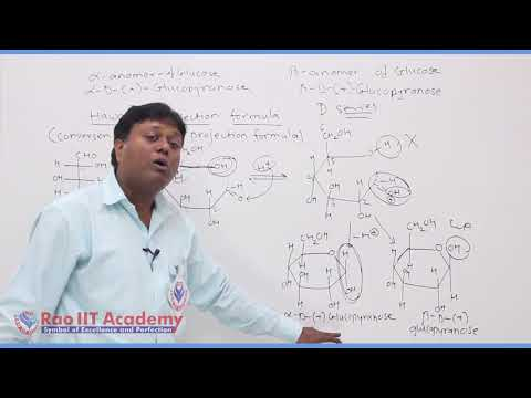 Biomolecules Chemistry Part-3 std 12th HSC Board Video Lecture BY Rao IIT Academy