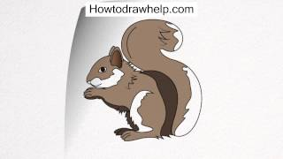 How To Draw A Squirrel Step By Step For Kids