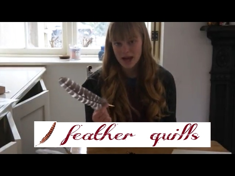 Where can I buy a Feather Quill? || Comparing Quills!