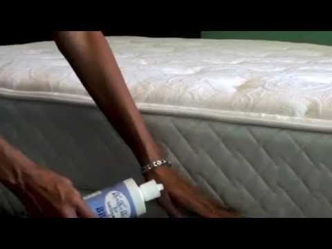 diatomaceous earth bed bugs