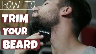 How To Trim and Shape Your Beard | TheGentlemansCove