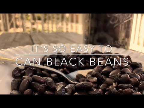 Canning Black Beans Is So Easy: Homesteading Family