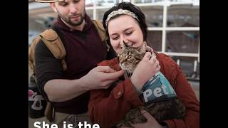 Denver International Airport & Xeli the Therapy Cat