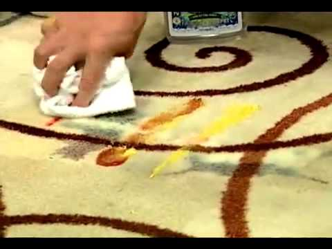 Fabric Carpet Stain Removal With CleanGo GreenGo
