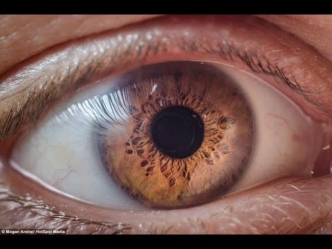 Get Cinnamon Colored Eyes Fast! Biokinesis Subliminal Hypnosis Change Your Eye Color Naturally!