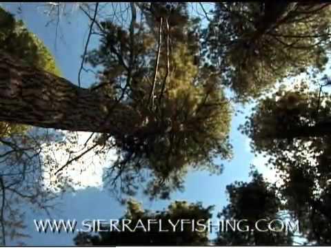 Sierra Fly Fishing Vol 2(The Golden Trout Wilderness)Trailer