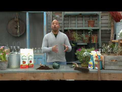 William Moss on Sustainable Gardening