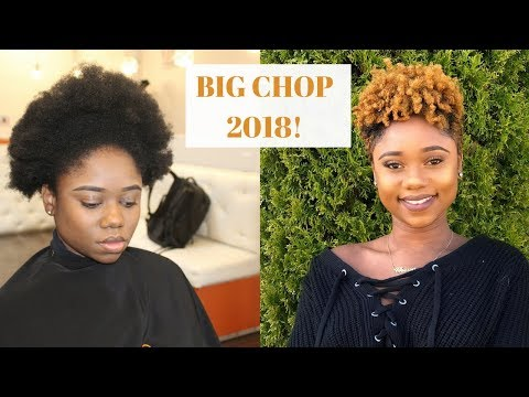 I GOT MY HAIR CUT ! BIG CHOP 2018 | First Time To A Natural Hair Salon