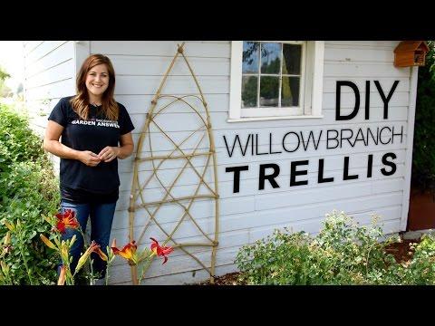 DIY Willow Branch Trellis (Full Version) // Garden Answer