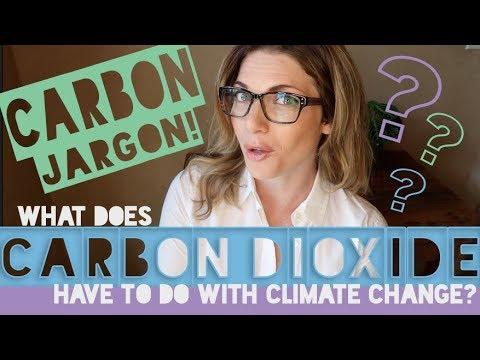 Carbon Jargon x Climate Change- What is Carbon Dioxide?