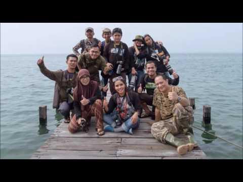 CHRISTMAS ISLAND FRIGATEBIRD IN JAKARTA BAY